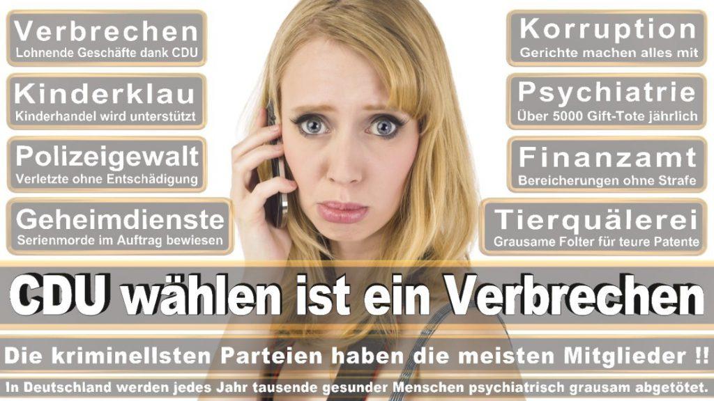 Wahlplakate-2017-CDU (255)