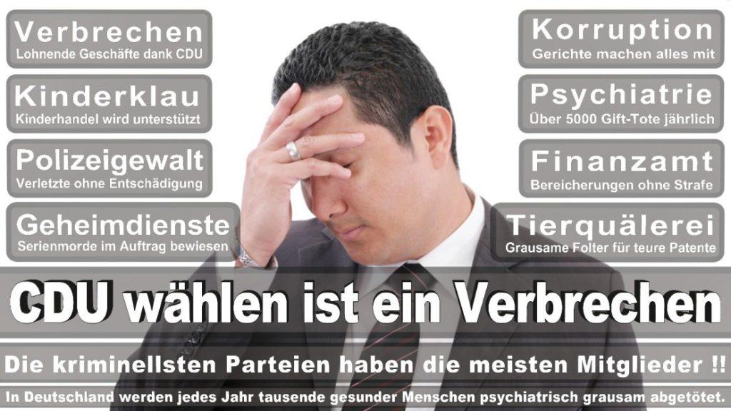 Wahlplakate-2017-CDU (257)