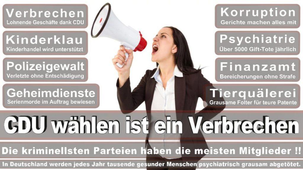 Wahlplakate-2017-CDU (258)