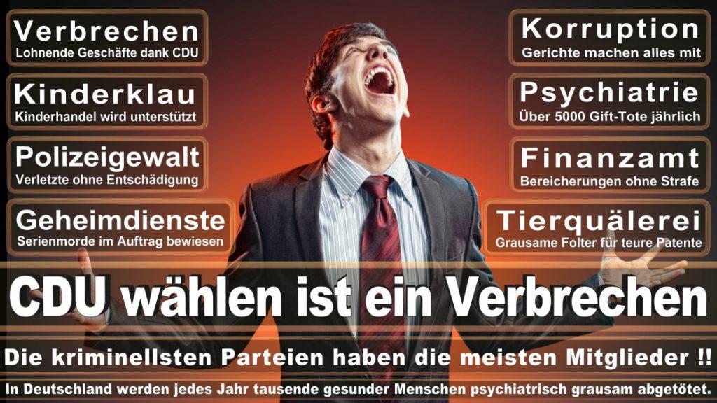Wahlplakate-2017-CDU (259)