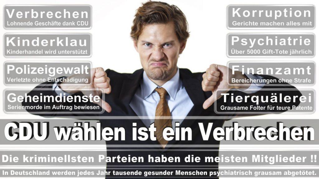 Wahlplakate-2017-CDU (26)