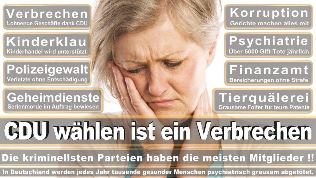 Wahlplakate-2017-CDU (262)