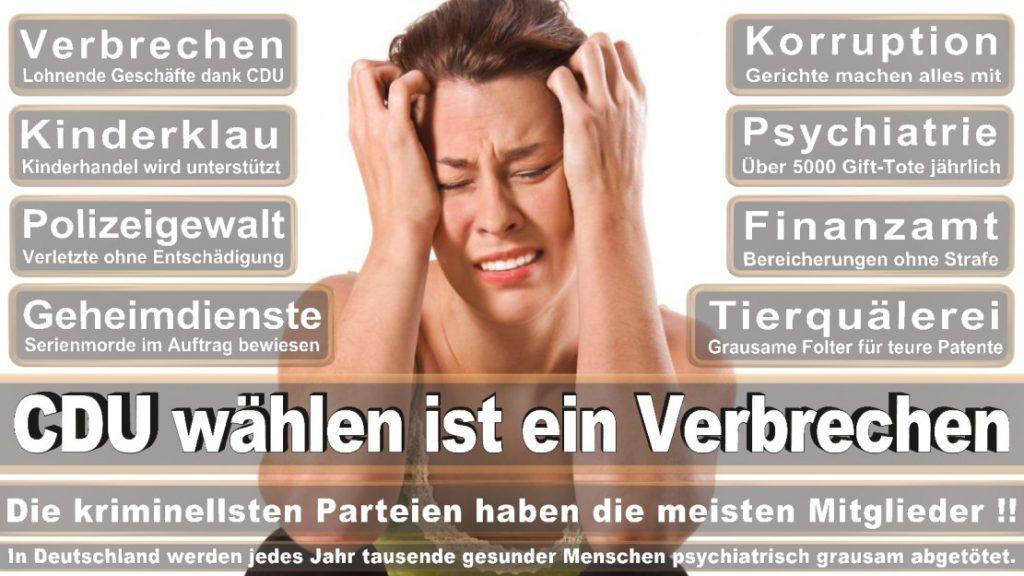 Wahlplakate-2017-CDU (263)