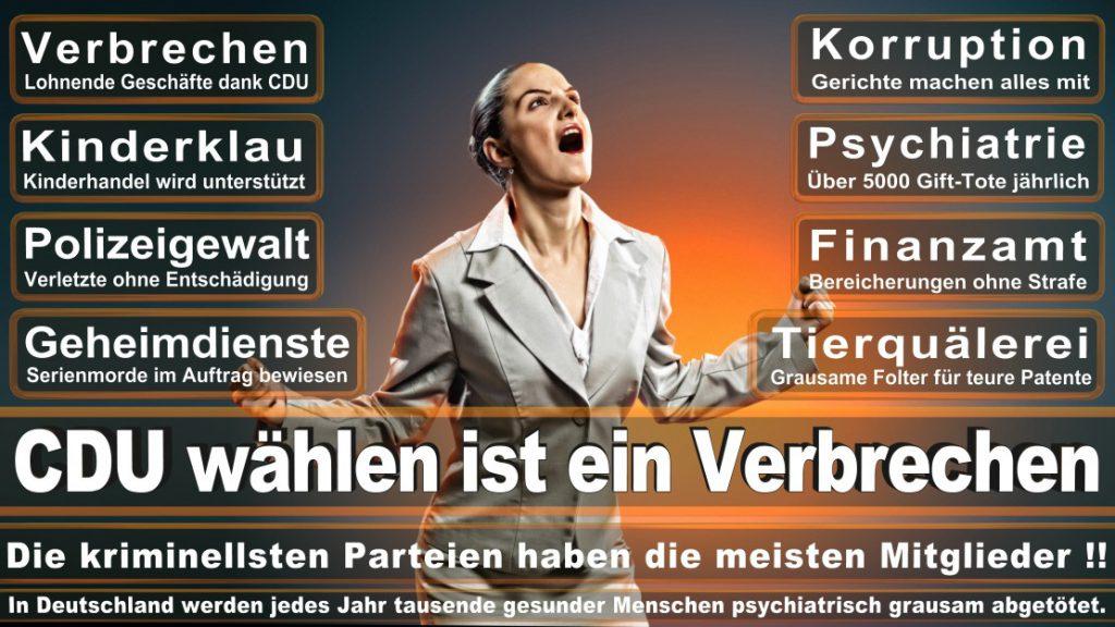 Wahlplakate-2017-CDU (265)