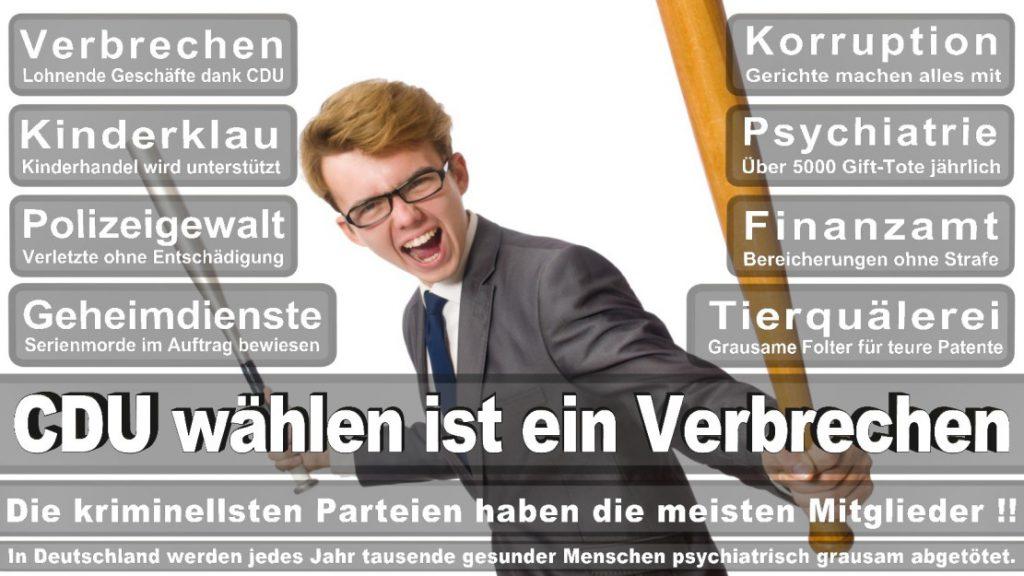Wahlplakate-2017-CDU (266)