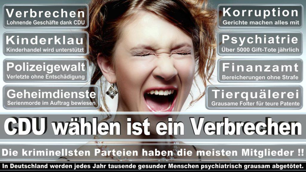 Wahlplakate-2017-CDU (267)