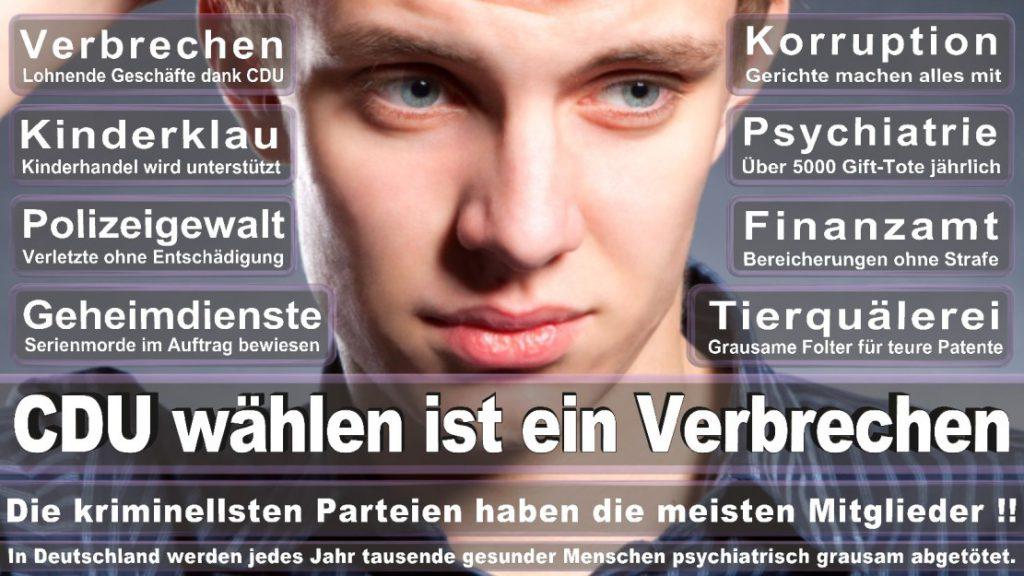 Wahlplakate-2017-CDU (268)