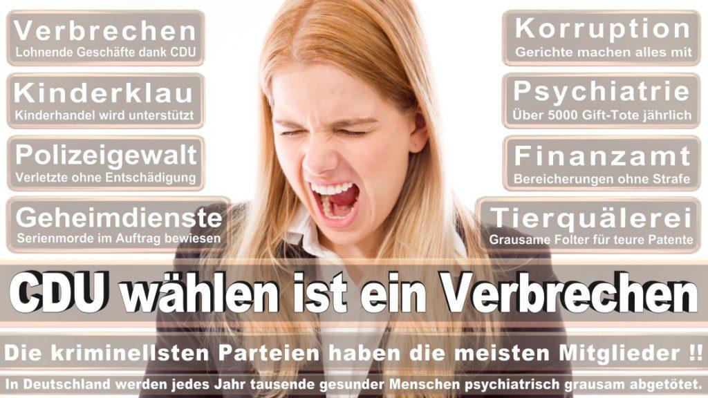 Wahlplakate-2017-CDU (269)