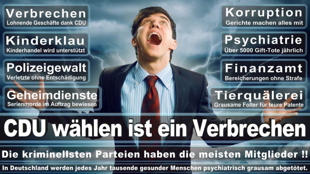 Wahlplakate-2017-CDU (27)