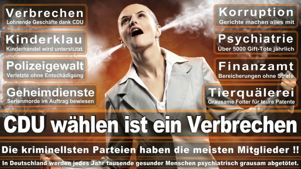 Wahlplakate-2017-CDU (270)