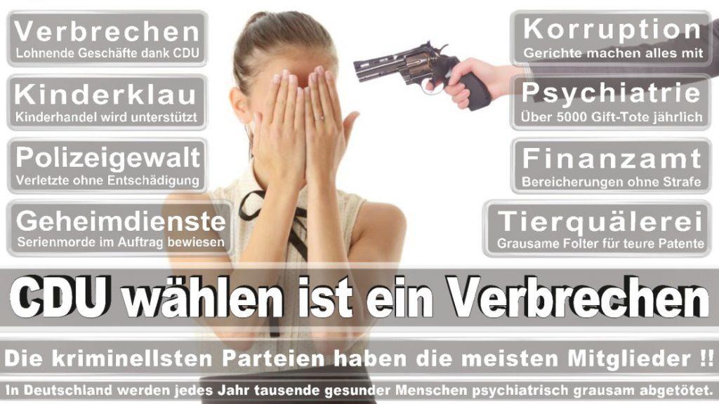 Wahlplakate-2017-CDU (271)