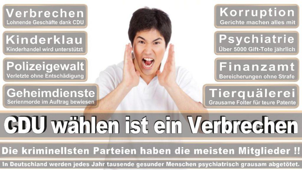 Wahlplakate-2017-CDU (272)