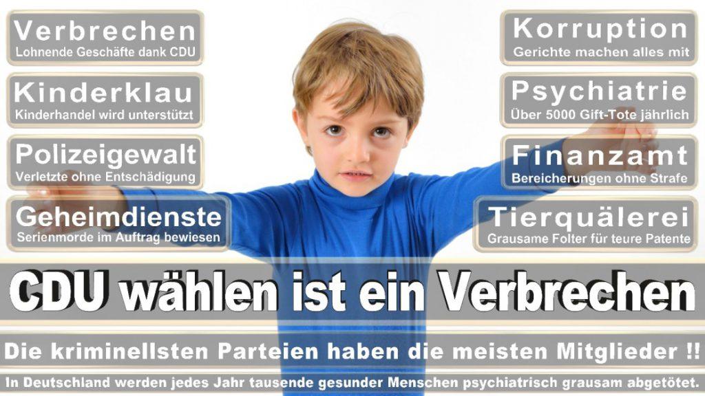 Wahlplakate-2017-CDU (274)