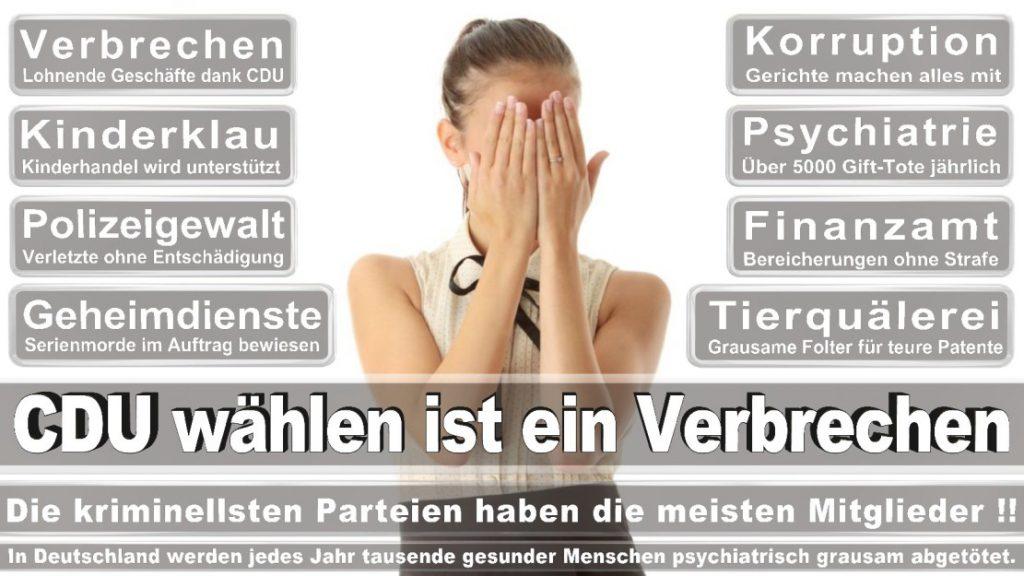 Wahlplakate-2017-CDU (275)