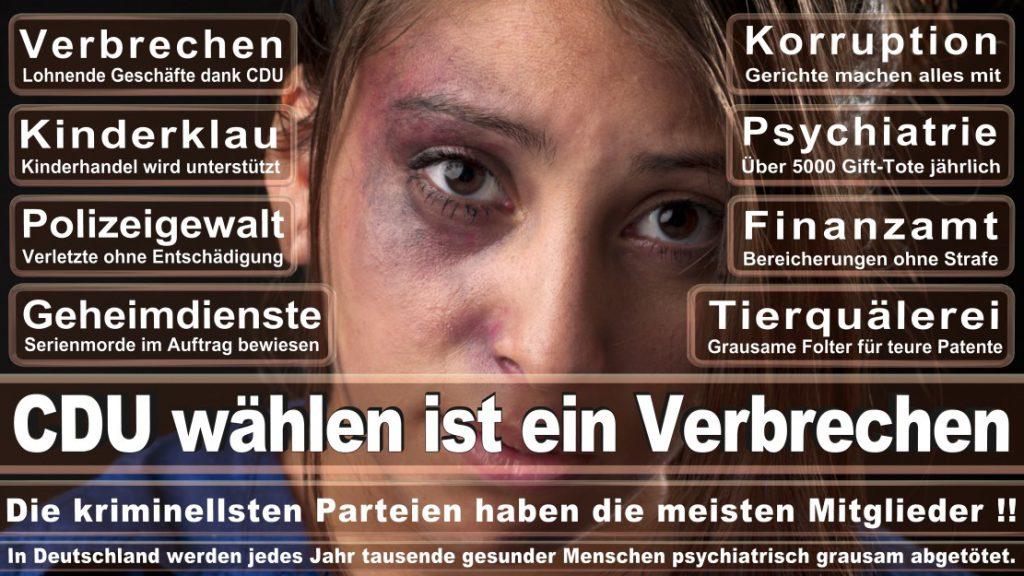 Wahlplakate-2017-CDU (277)