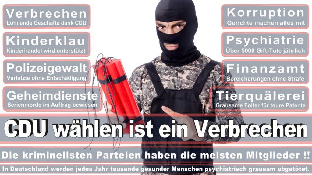 Wahlplakate-2017-CDU (278)