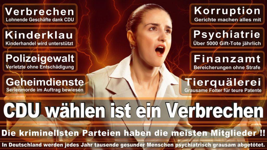 Wahlplakate-2017-CDU (279)