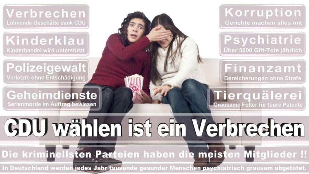 Wahlplakate-2017-CDU (281)