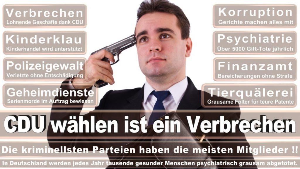 Wahlplakate-2017-CDU (282)