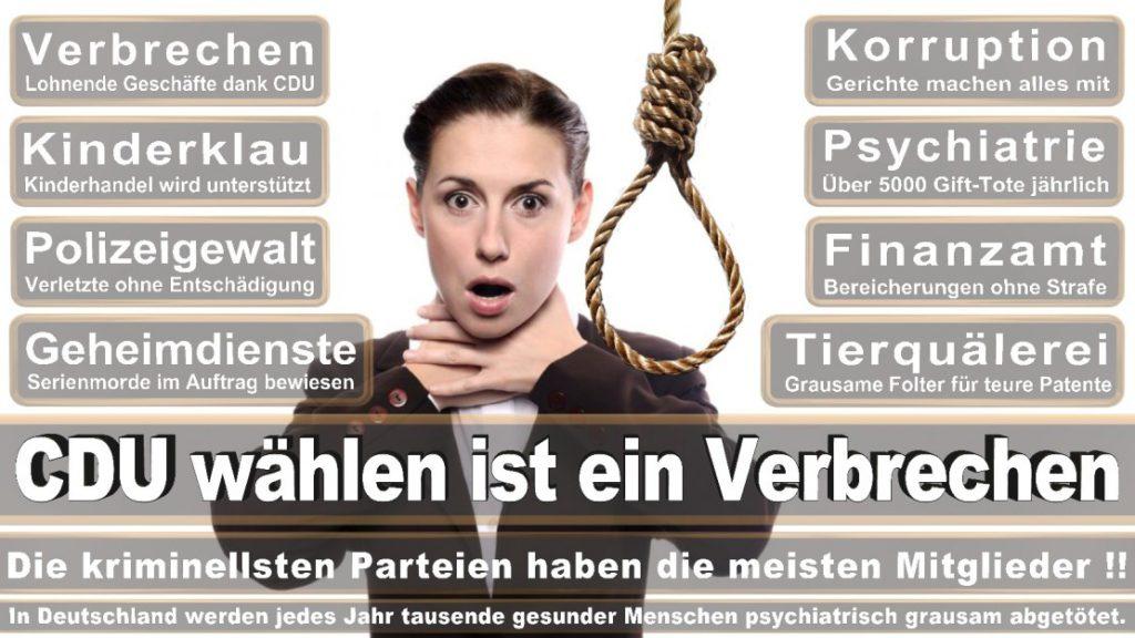 Wahlplakate-2017-CDU (283)