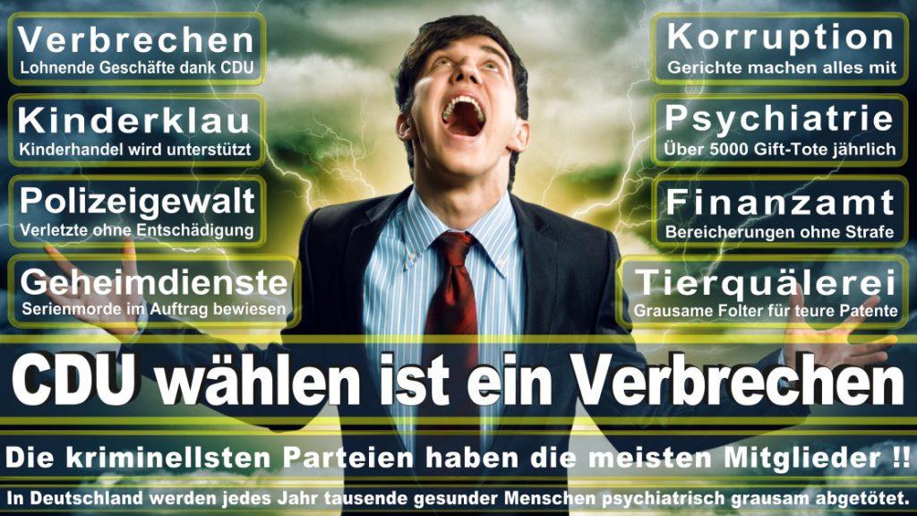 Wahlplakate-2017-CDU (284)