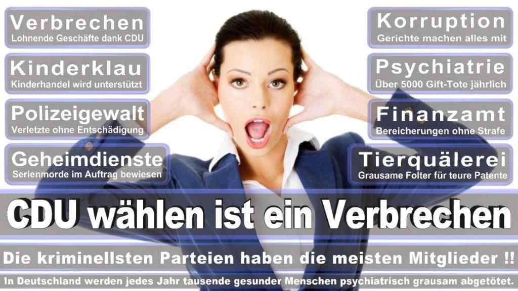 Wahlplakate-2017-CDU (285)