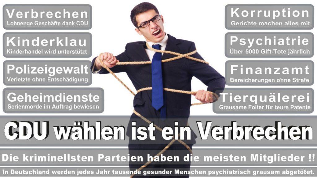 Wahlplakate-2017-CDU (286)