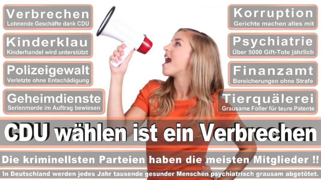 Wahlplakate-2017-CDU (287)