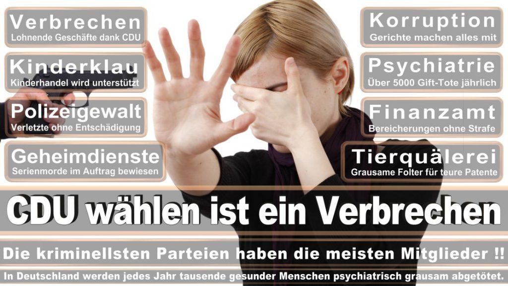 Wahlplakate-2017-CDU (289)
