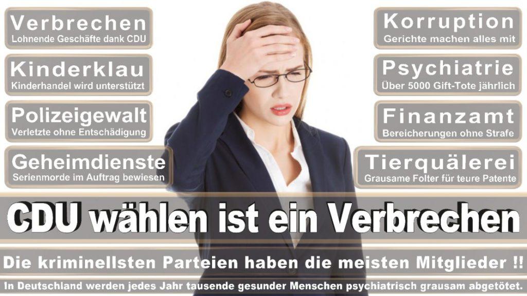 Wahlplakate-2017-CDU (29)