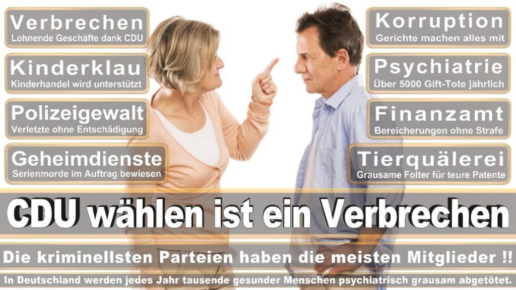 Wahlplakate-2017-CDU (290)