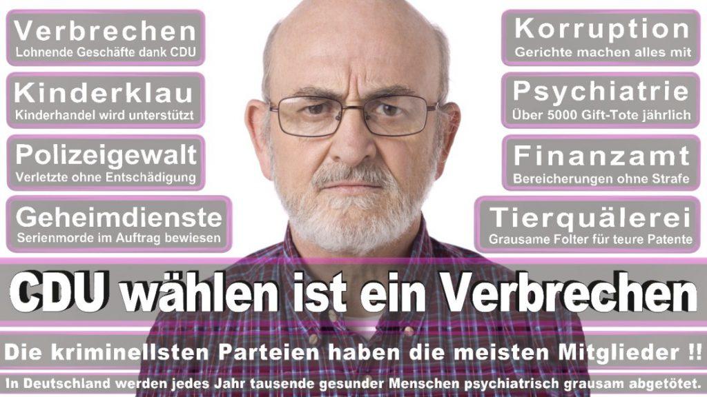 Wahlplakate-2017-CDU (291)