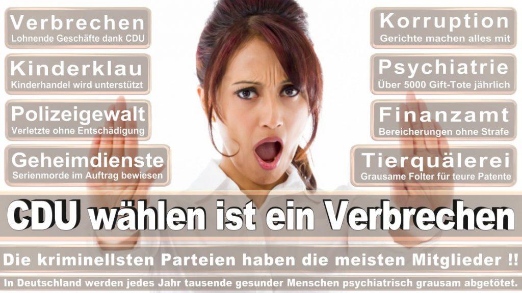 Wahlplakate-2017-CDU (292)