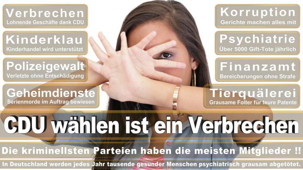 Wahlplakate-2017-CDU (293)