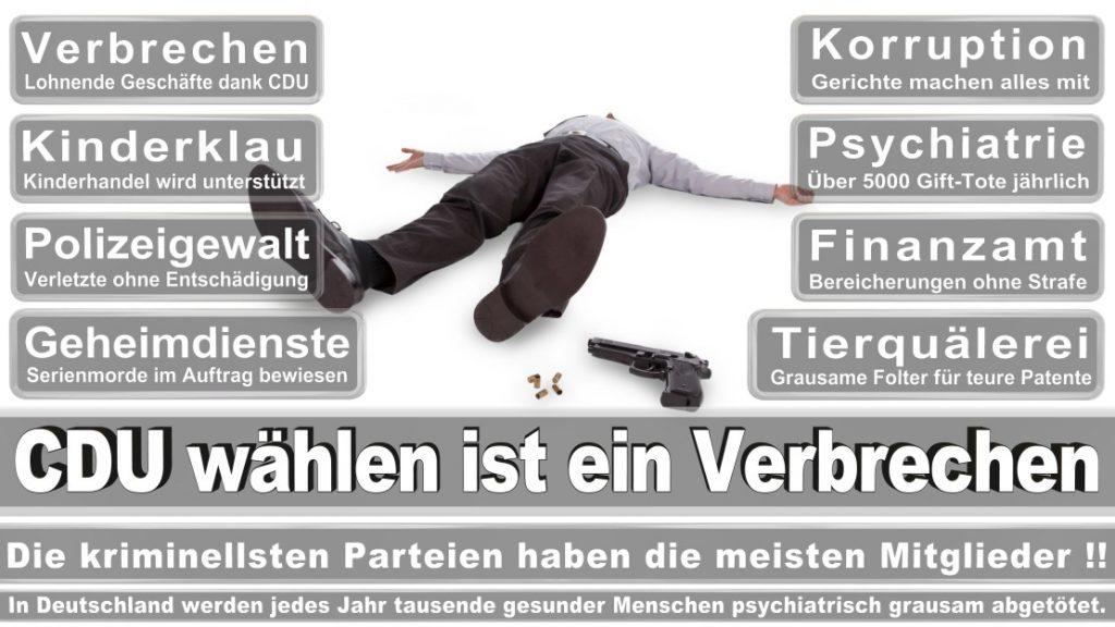Wahlplakate-2017-CDU (294)