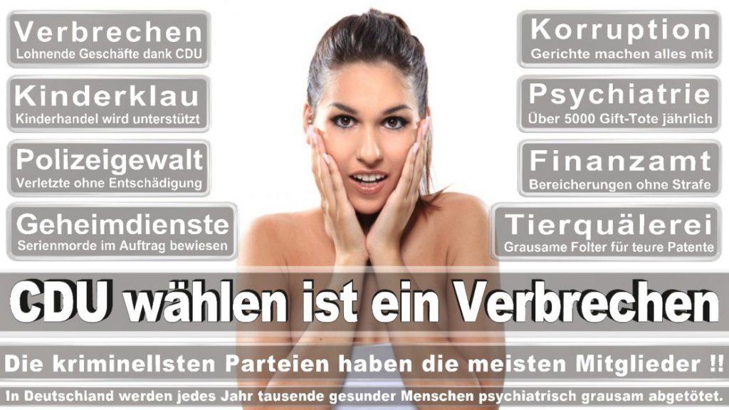 Wahlplakate-2017-CDU (295)