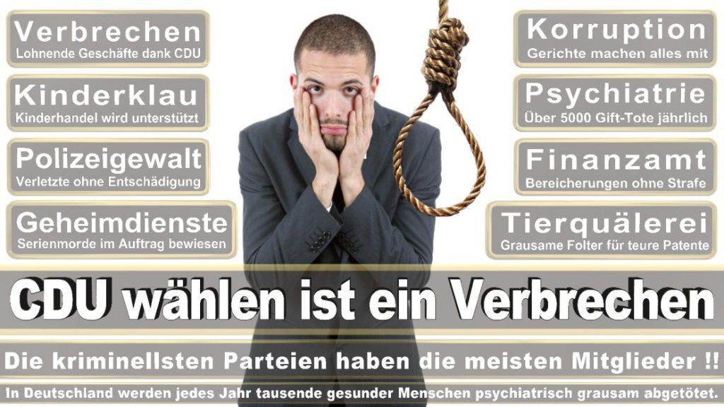 Wahlplakate-2017-CDU (296)