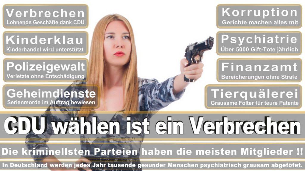 Wahlplakate-2017-CDU (297)