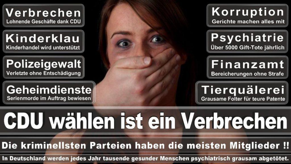 Wahlplakate-2017-CDU (298)
