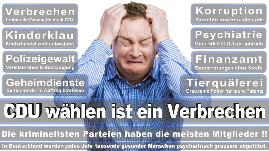 Wahlplakate-2017-CDU (299)