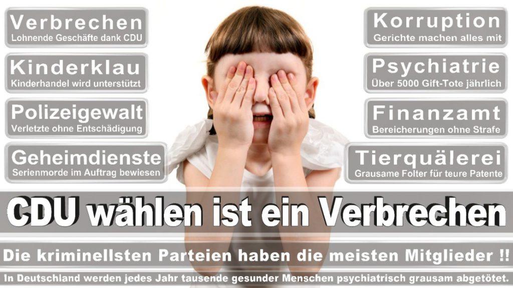 Wahlplakate-2017-CDU (3)
