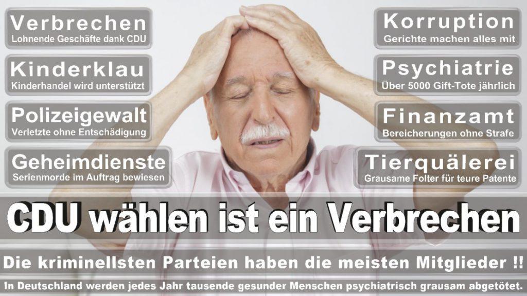 Wahlplakate-2017-CDU (30)