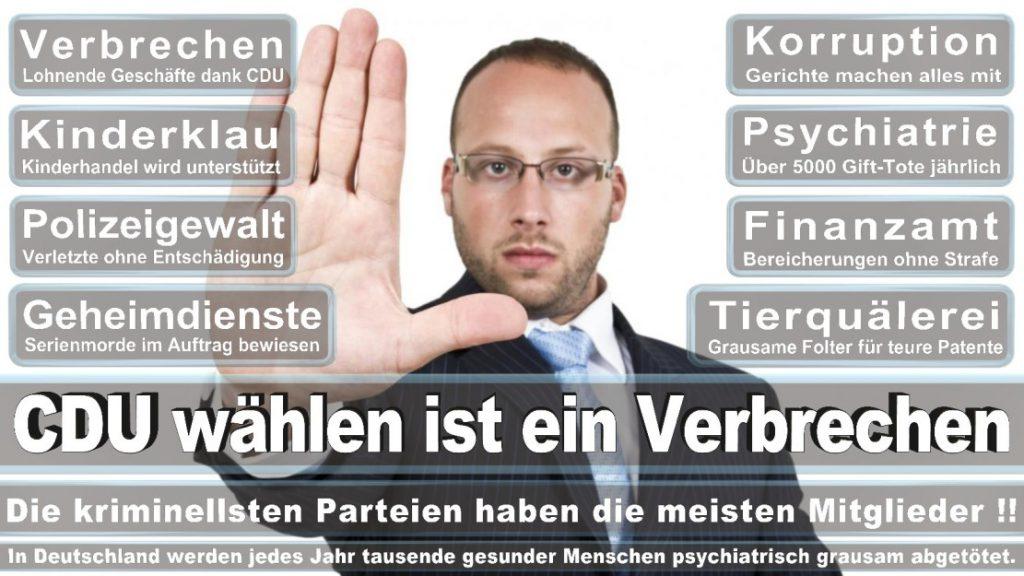 Wahlplakate-2017-CDU (300)
