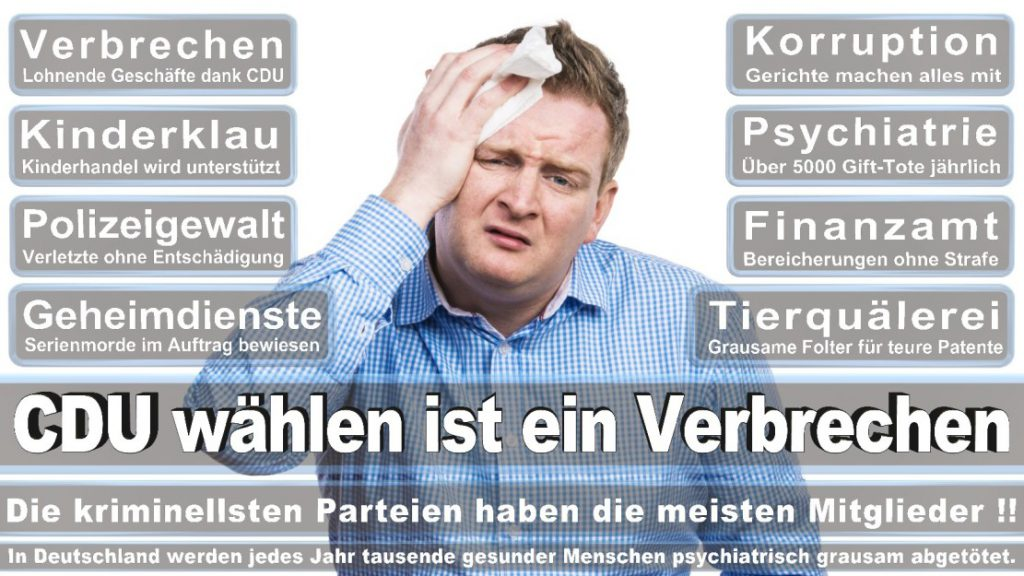 Wahlplakate-2017-CDU (301)