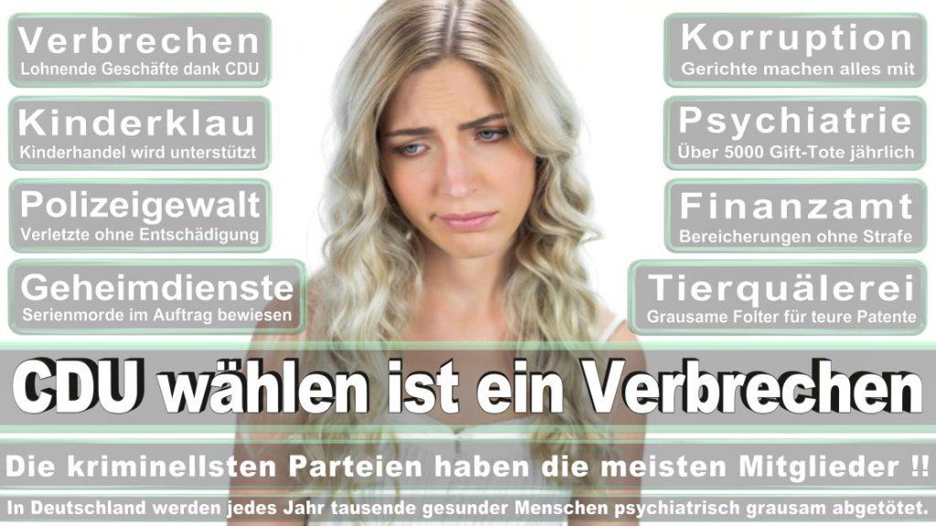 Wahlplakate-2017-CDU (302)