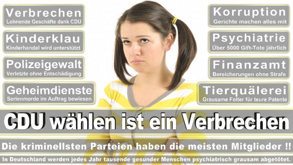Wahlplakate-2017-CDU (303)