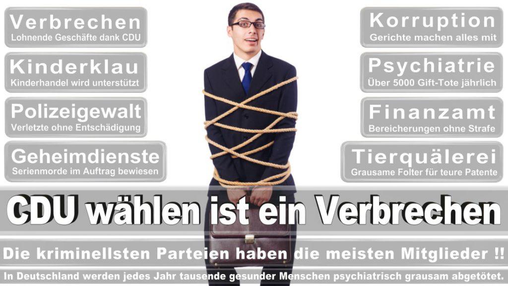 Wahlplakate-2017-CDU (304)