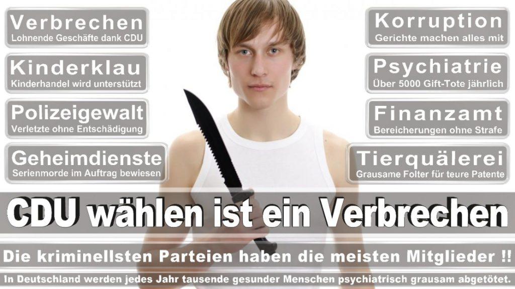 Wahlplakate-2017-CDU (305)