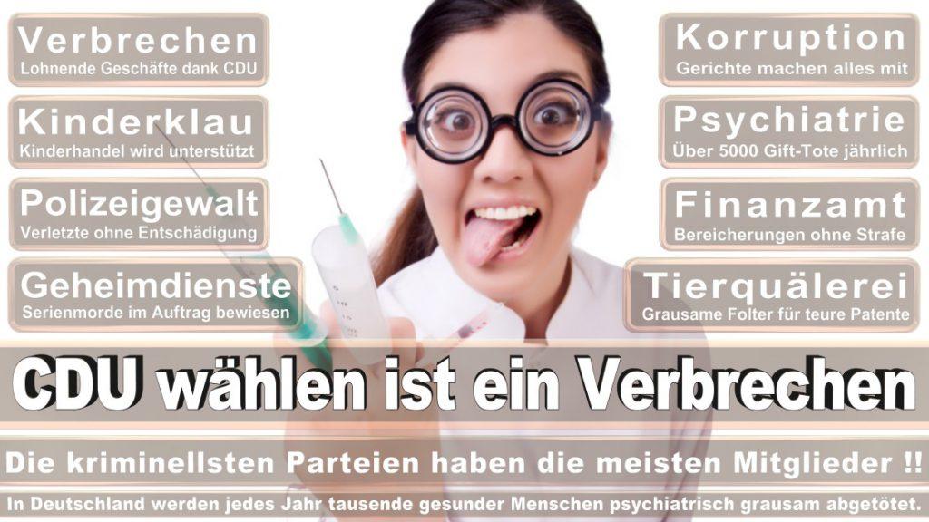 Wahlplakate-2017-CDU (306)