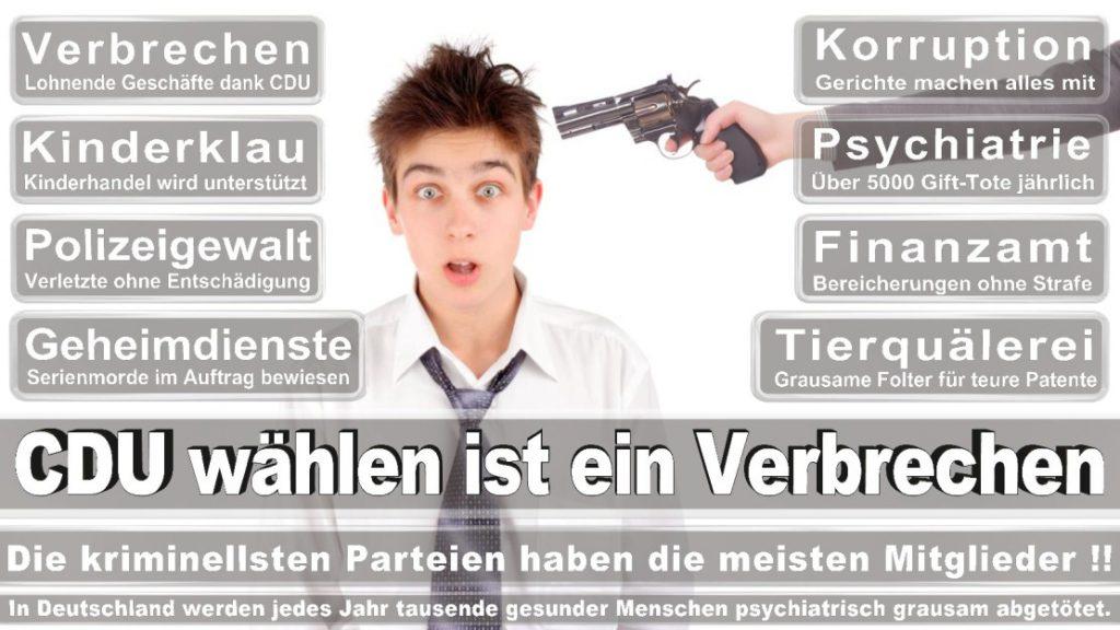 Wahlplakate-2017-CDU (307)